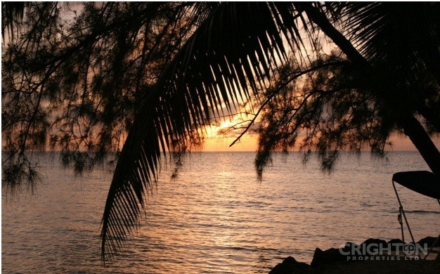 Why You Should Consider Properties For Sale in Rum Point