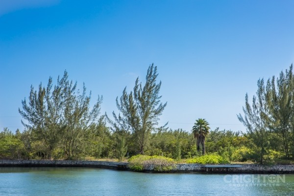 Patrick's Island